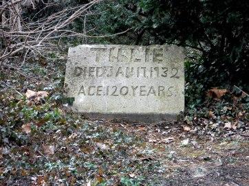 close up of Tilie's grave